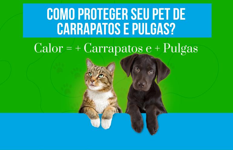 Como proteger seu pet de carrapatos e pulgas?