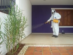 1. Desinsetização (controle de insetos ou dedetização)